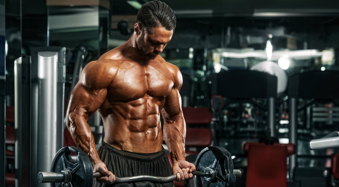 structure your muscle